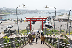 (GenJapan1986) Tags: 2015            travel nikond610 japan aomori gull bird shrine distagont225 zf2  carlzeiss