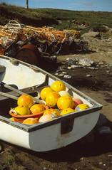 Boat and buoys (1990 July Quarff 13 mod) (AngusInShetland) Tags: 35mm scotland boat buoys shetland creels quarff canoscan5600f