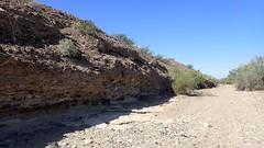 P4032992.jpg (DrPKHouse) Tags: arizona unitedstates loco fieldphoto nearshore bouse cibola fieldproject mapunit upperbouse