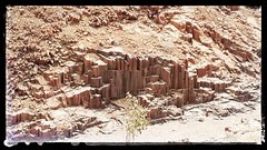 Organ Pipe Rock formation in Damaraland Namibia. (act.marketing) Tags: flowers plant tree history beauty gardens photo dubai desert outdoor border parks kingdom arab saudi arabia bloom dates riyadh wadi ibn  najd saud                              1818