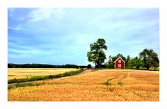 """Little house on the prairie"" (Alexandros Valdovinos) Tags: sweden summer expressyourself"