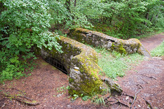 Bielsa (felixcontrerassanchez) Tags: bridge summer verde green puente nikon huesca verano pirineos sobrarbe pineta bielsa
