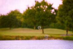 DSC_3950 (fellajr) Tags: family golf fun waiting tx 4th july course deerpark 2016 july4thfireworks