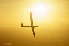 Only the sky is the limit! (Tobiasstift) Tags: sonnenuntergang dg100 gliding glider fliegen flugzeug flug flight flying fliegerei segelfliegen segelflugzeug segelflug abendrot sunset sun soaring abendsonne sony a6000