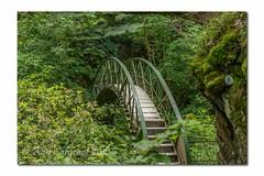 DSC_4987-5jpeg_-5FB (Pamsar) Tags: bridge wales waterfall devils aberystwyth