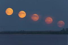 (engine9.ru) Tags: blue moon mist clouds river 300mm astronomy moonset      arkhangelsk   dvina