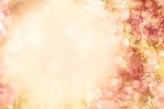 floral background (lisame0511) Tags: aroma aromatherapy background web beautiful beauty bloom blossom blurred botanical spring summer botany bright closeup environment field flora floral flower freshness garden glow green grow harmony health idyllic lawn light meadow natural nature petals plant pollen pure scent small sun sunrise sunset tranquil white yellow pink red vivid bokeh space poland