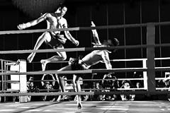 Muay Thai-02 (Sanjiban2011) Tags: muaythai thailand martialarts sports fastshutter combat selfdefense nikon d750 fullframe fx nikon24120