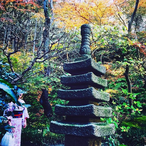 In Kamakura last year. Looking forward to seeing these colors again soon
