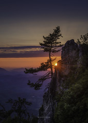 On the Edge (Croosterpix) Tags: sunset sky sun tree mountain nature nikond610 nikkor80200f28