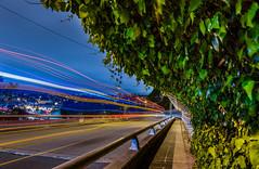 ivy blue (pbo31) Tags: california bridge motion color bus green northerncalifornia night oakland spring nikon highway ramp traffic over may overpass ivy walkway lakeshore bayarea grandlake eastbay bluehour alamedacounty roadway d800 580 2015 lightstream boury pbo31 lakeparkavenue