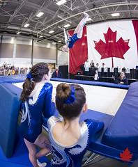 2015AGFT&T-3496 (Alberta Gymnastics) Tags: calgary centre trampoline alberta championships agf genesis federation tumbling provincial gynmastics
