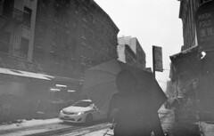 (David Chee) Tags: street leica nyc blackandwhite bw snow newyork film analog zeiss umbrella chinatown fuji kodak 28mm hc110 rangefinder carl fujifilm neopan 800 m6 f28 mott biogon zm