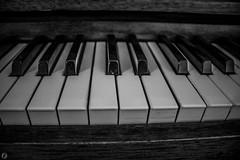 Piano keys (FitzJohnson) Tags: blackandwhite bw music monochrome keys blackwhite piano monochromatic canonrebel pianokeys musicinstrument odc canoncamera ourdailychallenge