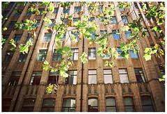 Change is inevitable, growth is optional (Anita Waters) Tags: quote change olympus om2n kodak colorplus 200 film analogue autumn city