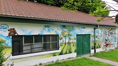 Stanz & Jamz / Brugge - 11 jul 2016 (Ferdinand 'Ferre' Feys) Tags: streetart graffiti belgium belgique brugge belgi urbanart bruges graff graffitiart sts jamz arteurbano artdelarue jasta stanz urbanarte jastacrew