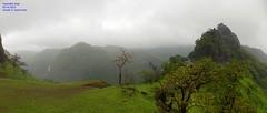 Panorama 11 (Prof.Suresh G. Isave) Tags: varandha onedaytrek tourists attractions near pune maharashtratourism monsoon spots rainy bhor