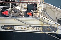 IMG_7974 Tenacious. (Boat bloke) Tags: sydney australia tallship square rigger ship timber boat wood wooden sea ocean darling harbour harbor tenacious canon sx50hs