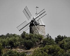 les amoureux du moulin - the mill of love (png nexus) Tags: moulin vert nature ancien desaturation