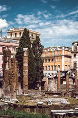 _DSC4107-Modifica-Modifica (syderianus) Tags: nikon d800 roma rome largo argentina di torre tempio campo marzio