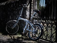 Disfrutar, doblar y guardar (Luicabe) Tags: aire bicicleta cabello enazamorado exteror libre lucabe luis metal plegable rueda vehculo verano verja yarat1 zamora
