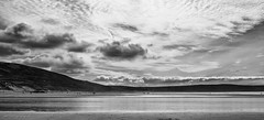 Woolacombe (pm69photography.uk) Tags: woolacombe northdevon sea clouds hdr nikon d810 sigma35mm14 blackandwhite bw surfing