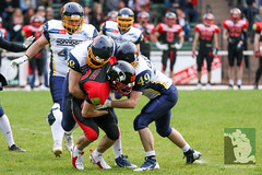 "RFL15 Solingen Paladins vs. Assindia Cardinals 02.05.2015 062.jpg • <a style=""font-size:0.8em;"" href=""http://www.flickr.com/photos/64442770@N03/17159051480/"" target=""_blank"">View on Flickr</a>"