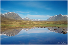 Black Mount Reflection