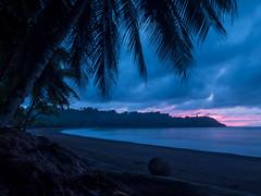 Bahia Drake.jpg (Vince Trecu Photography) Tags: sunset tree beach pacific coconut plage