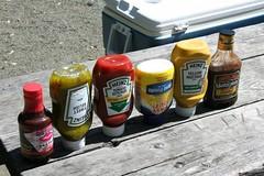 Memorial Day BBQ (Photographing Travis) Tags: park holiday picnic losgatos memorialday vasonna
