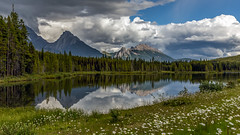 A Daisy A Day (murph le (Away)) Tags: light canada mountains nature clouds reflections landscape kananaskis country alberta daisy canon6d