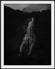 bowen falls (Andrew C Wallace) Tags: newzealand blackandwhite bw cloud mist rain waterfall milfordsound canong3 bowenfalls