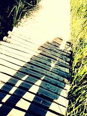 our silhouettes (Bambola 2012) Tags: europe europa croatia croazia hrvatska plitvice plitvikajezera plitvicelakes laghidiplitvice nacionalnipark parconazionale nationalpark unesco lika jezero lake lago shadow ombra sjena path sentiero put wood drvo legno a sedge carice