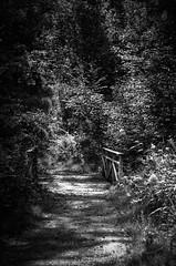 Bridge (mellting) Tags: bridge blackandwhite monochrome landscape nikon flickr sweden sverige bro bnw eskilstuna platser nikkor5018 explored bloggad skjulsta nikond7000 mellting instagram matsellting