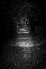Dark trail (dekish1) Tags: johnbrown lakeplacidny canon7dmarkii dark trail canon1755mm