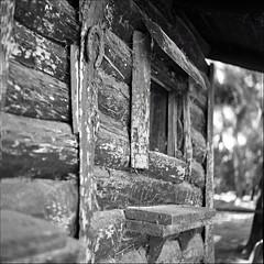 la solita spocchia  ;/) sferette a gogo !! (schyter) Tags:  salyut type ii 1965 6x6 medium format medio formato arsenal kiev pellicola film analogica analogic soviet camera ukranian 11500 b industar29 2880mm fsu macchina fotografica bw bn bianconero blackwithe turano lodigiano lodi mf rollei rpx100 stoeckler doublebath lens spotmeter homemade development homemadescanned tank ap compact 26 c argentica epson v600 bianco e nero allaperto monocromo