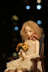 IMG_8288 (Emma Wolf) Tags: doll bjd customblythe obitsucustom classydoll dimdolllarina mystickids zinnadollmore