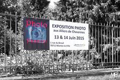 Photo Passion X-T1 DSCF0382 (mich53 - Thanks for 2700000 Views!) Tags: art ledefrance exposition manteslaville xt1 xf1655mmf28rlmwr