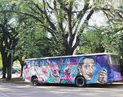 Salvador Dal - 2015 (Saladdeys) Tags: salvador dal parque ibirapuera brasil brazil sp green nature natural bus tree automotivo canon street photo photography best new 2k16 morning