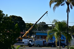 Roofing [house move] (Images by Jeff - from the sea) Tags: nikon d7200 blue bluesky palmtrees tamron trees truck tamronsp2470mmf28divcusd housemove crane roofing mangotree july 2016 powerlines 4wdrive 4x4
