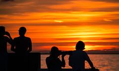 Silhouettes by the sunset (Maria Eklind) Tags: hav ribersborg bridge people brygga3 sweden outdoor light ribban summer beach ocean malm strand resund water sunset brygga tbryggan sun solnedgng siluett silhouette skneln sverige se