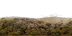Wistman's Wood from above (alex) Tags: woodland wood trees oak dartmoor devon aerial view quadcopter drone phantom panorama 360x180 equirectangular 360degrees fromabove