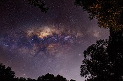 Milky Way (jconstable16) Tags: milkyway longexposure summer naturephotography nature galaxy galactic space astrophotography astro starscenery starscape stars nightscape nightscenery nightphotography nightsky night pa pennsylvania photographer photography canont5 canonphotos canon canonphotography