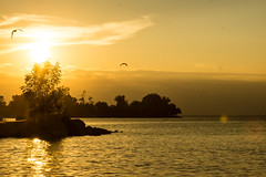 Summer Sunset (Lake Simcoe)