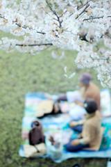 (M3R) Tags: two people picnic under tree sakura blossom cherryblossom sakuranomiya osaka japan