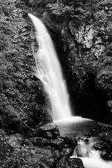 Todtnau (Pierre Dauwe) Tags: allemagne todtnau forêtnoire