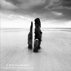 Totems (ScudMonkey) Tags: totems c2016paulbradley groyne post wood sandsend whitby coast northyorkshire monochrome bw blackwhite squareformat beach canon 6d ef1740mmf4l