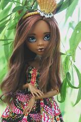 IMG_8309 (Cleo6666) Tags: mattel monsterhigh monster high clawdeen clawdeen17 ooak custom repaint doll