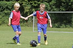 Feriencamp Neumnster 28.07.16 - c (30) (HSV-Fuballschule) Tags: hsv fussballschule feriencamp neumnster vom 2507 bis 29072016