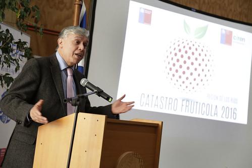 Catastro Frutícola de Los Ríos
